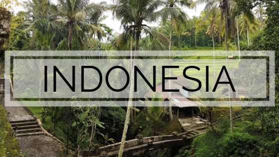 IndonesiaItinerary guide things to do