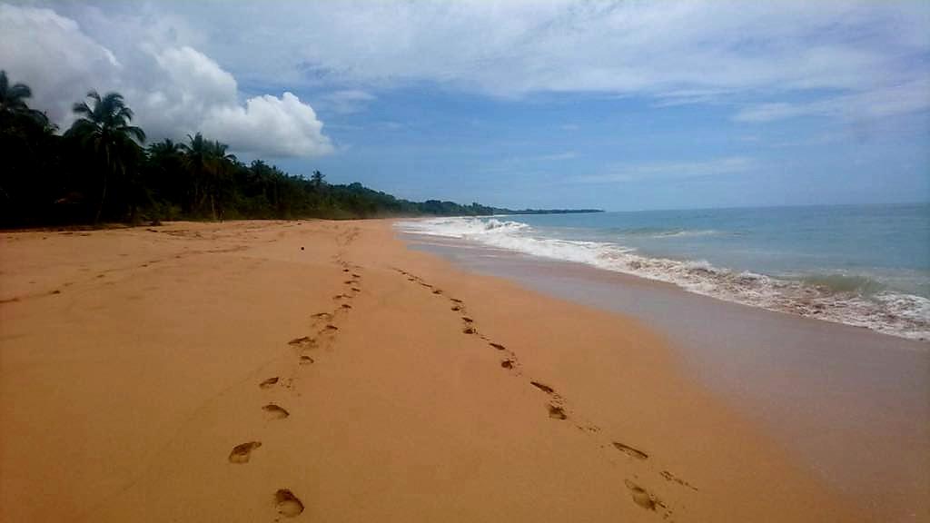 Playa Bluff Bocas del Toro Panama