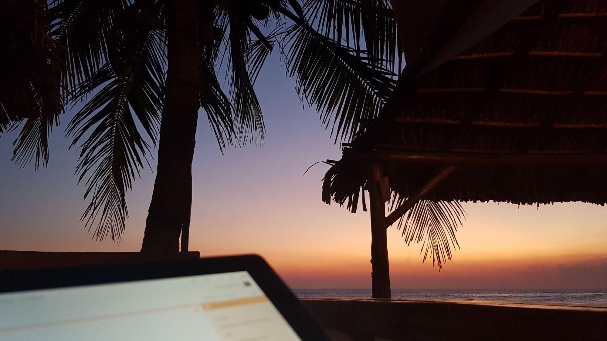 Top 14 WordPress Plugins